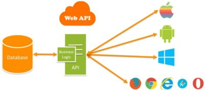how to build a wordpress search using api