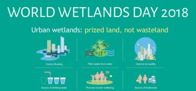 World Wetlands Day - Milton Ontario Canada