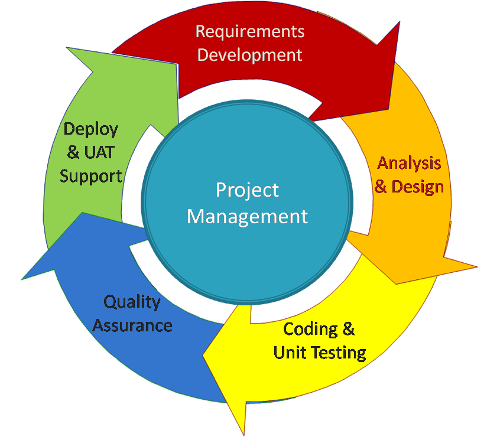 Computer Programming Business Requirements Analysis