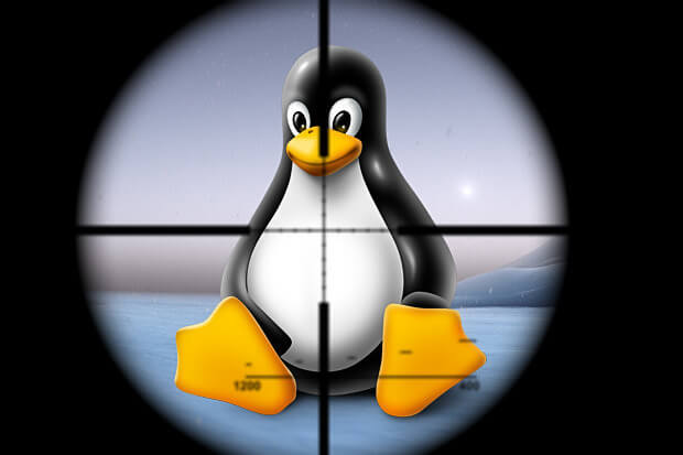 Linux Kernel Can Be Exploited Remotely; Kernel Prior To 5.0.8 Affected