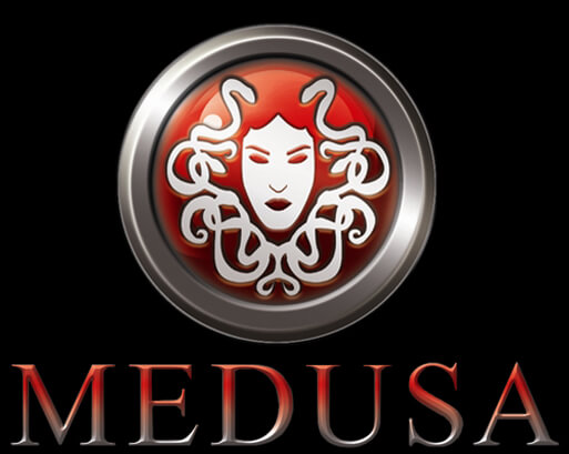 Medusa Parallel Network Login Auditor